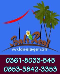 Real Bali Property Professionals