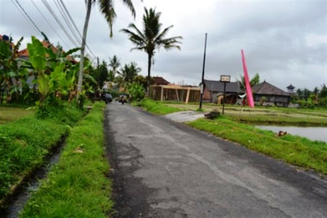 Land For Sale in Ubud Bali near with Ubud Center ( LUB010S )