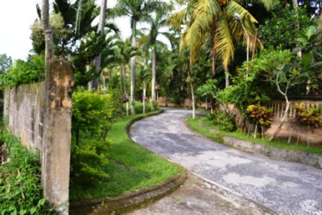 Land for sale in Ubud Bali Near by Monkey Forest ( LUB039S )