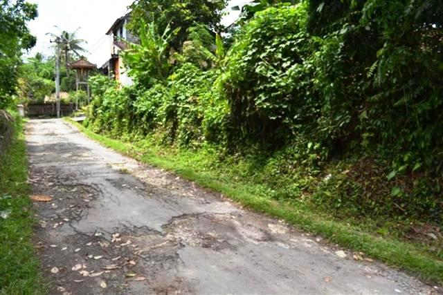 Land For Sale in Ubud Bali Suitable for Villa in Sayan ( LUB040S )