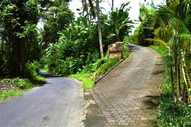 Land for sale in Ubud Bali suitable for investment ( LUB042S )