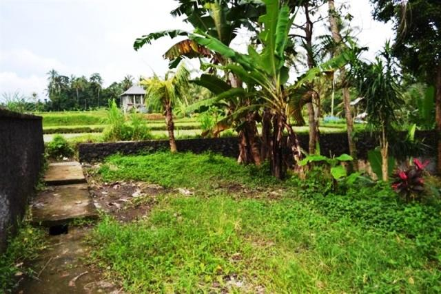 Land for Sale in Ubud Bali 12 are 5 minute to ubud Traditional Market ( LUB048S )
