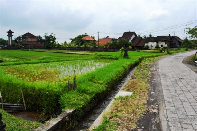 Land for sale in Ubud Bali near by Ubud market ( LUB052S )