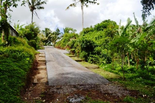 Land for sale in Ubud Bali 180 are for investment ( LUB057S )