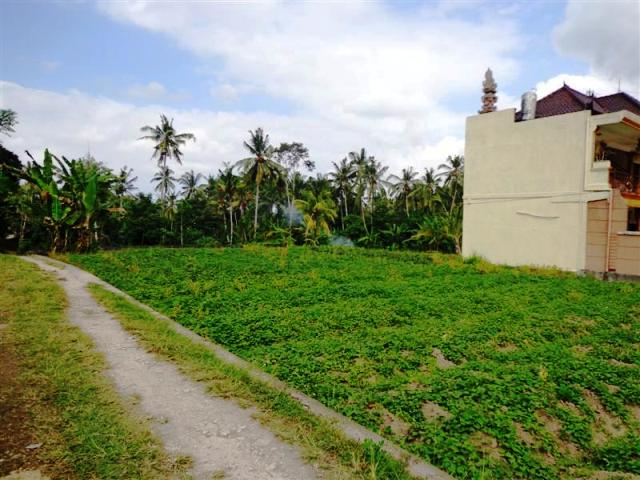 Land for sale in Ubud Bali near by Maya Ressort ( LUB088S )