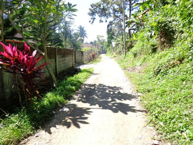 Land for sale in Ubud Bali rice field view suitable for villa ( LUB089S )