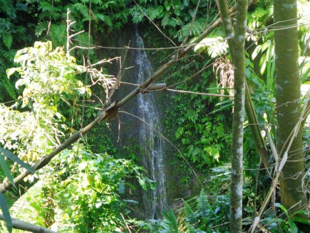 Land for sale in Ubud Bali suitable for villa ( LUB090S )