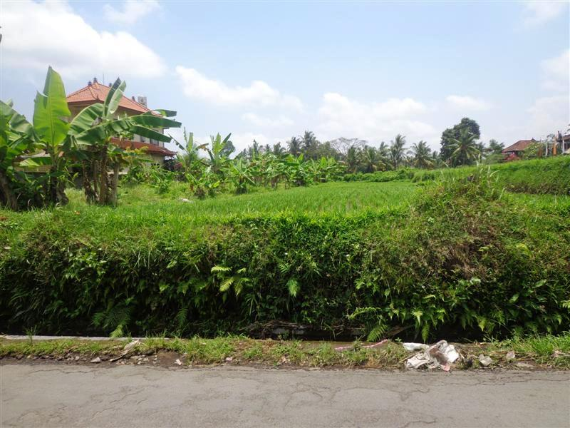 Land for sale in Ubud Bali suitable for villa with rice fields view ( LUB123S )