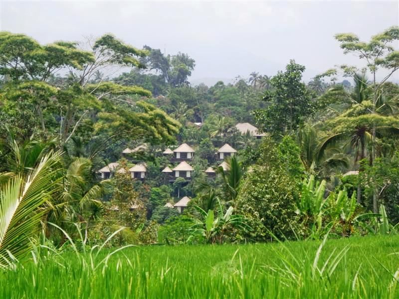 Land for sale in Ubud Bali with ayung river view ( LUB129S )