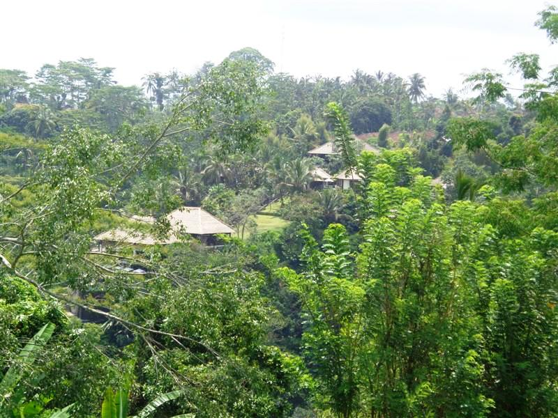 Land for sale in Ubud Payangan Bali with view of river valley ( LUB130S )