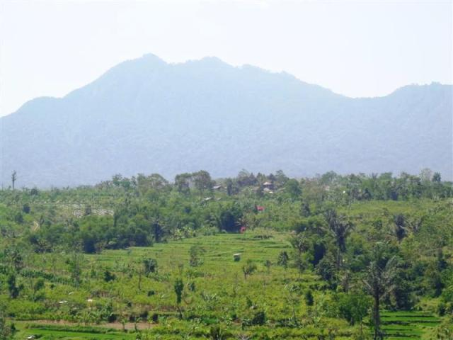 Land for sale in Ubud Bali Spectacular mountain and rice fields view ( LUB132S )