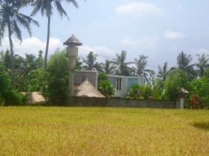 Land for sale in Ubud center