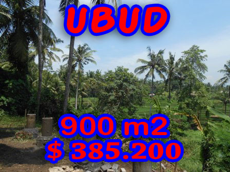 Land for sale in Ubud 9 Ares in Ubud Center