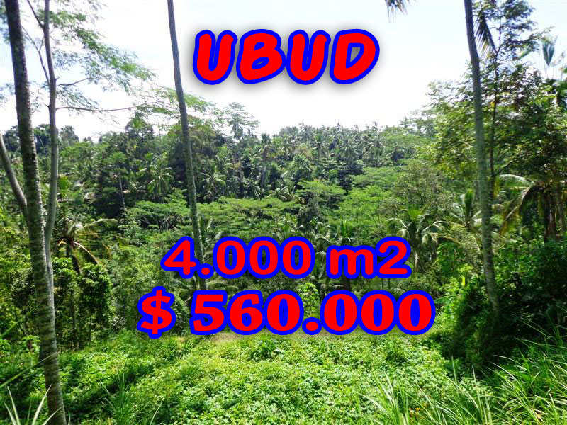 Land for sale in Ubud 4.000 m2 in Ubud Tegalalang Bali