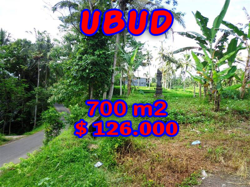 Exotic Land for sale in Ubud Bali 7 Ares in Ubud Tegalalang