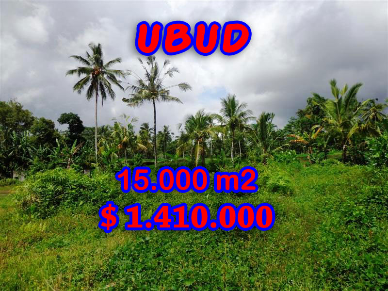 Land for sale in Ubud Bali 15.000 m2 in Ubud Tegalalang
