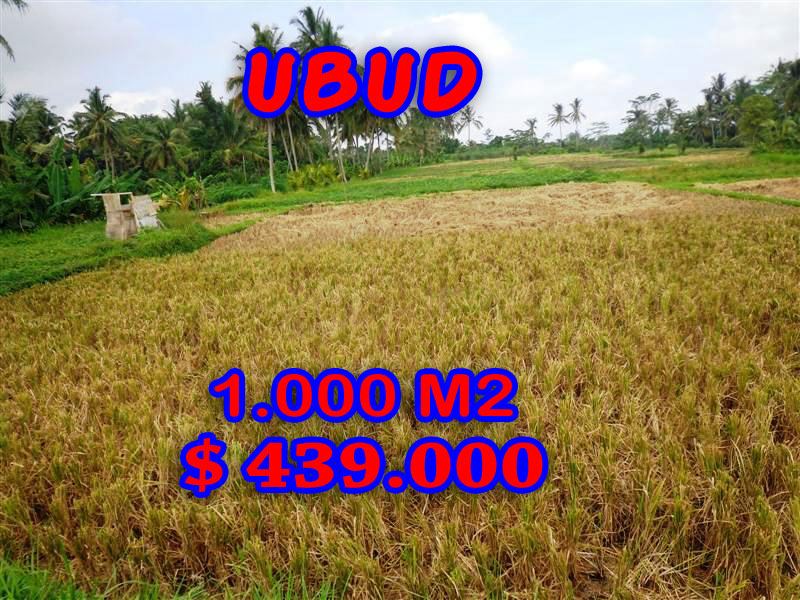 Land in Ubud for sale, Attractive view in Ubud Center Bali – TJUB235