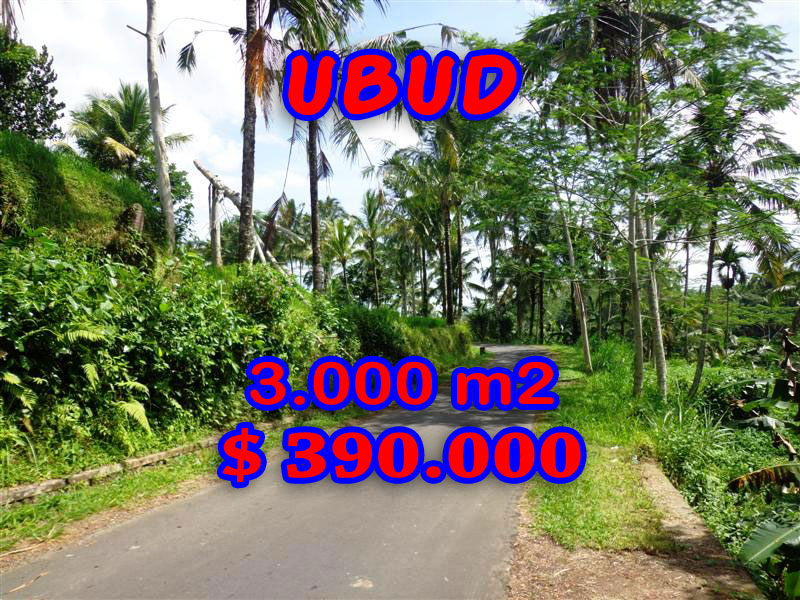 Affordable 3.000 sqm Land in Ubud Bali For sale