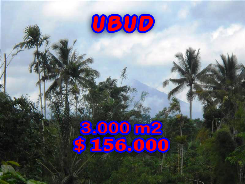 Land for sale in Ubud Bali – TJUB201 By the river valley