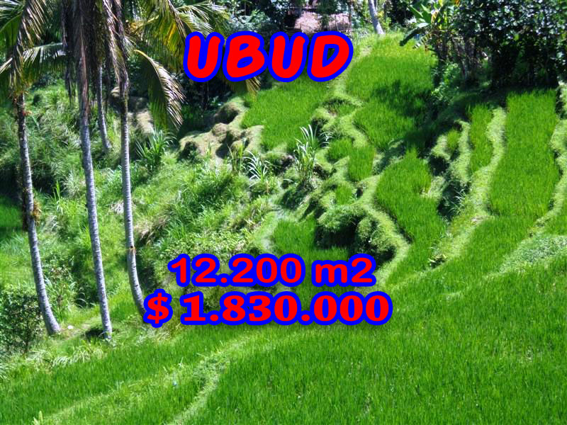 Land in Ubud for sale 122 Ares with River Valley and Paddy fields