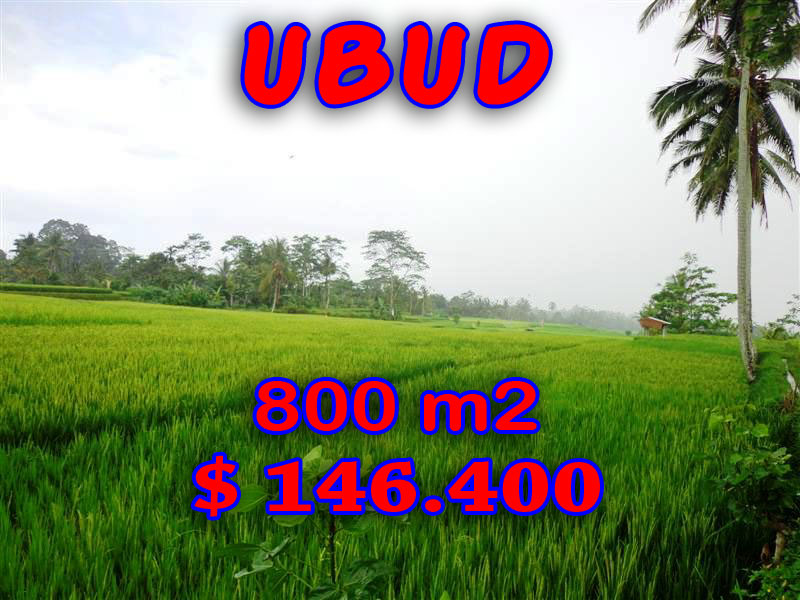 Land for sale in Ubud Bali terraced paddy view