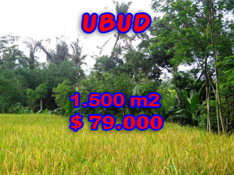 Land for sale in Bali, Fabulous view in Ubud Bali – 1.500 sqm @ $ 52