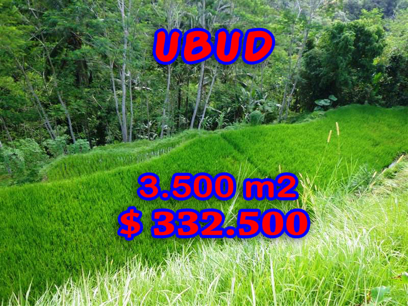 Ubud Land for sale Spring Water on site in Ubud Tampak siring Bali