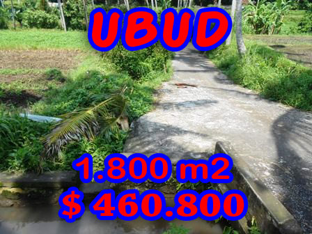 Bali Land for sale 18 Ares in Ubud Center