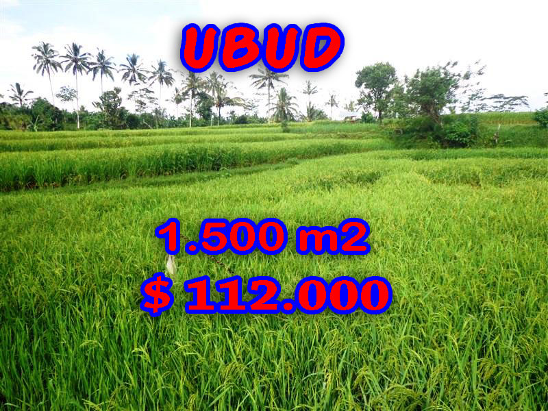 Land in Bali for sale, Eye-catching view in Ubud Bali – 1.500 sqm @ $ 74