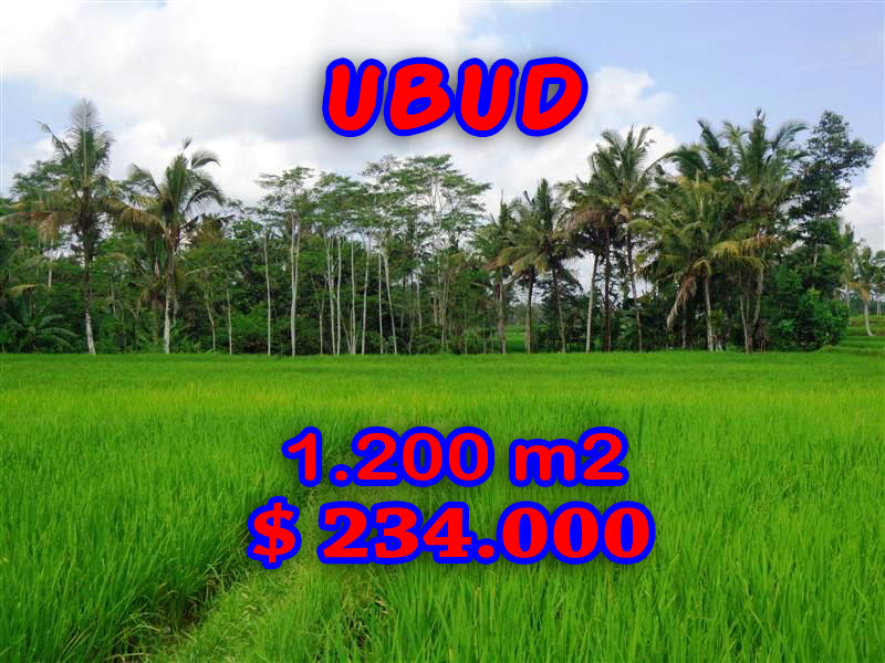 Land for sale in Bali 12 Ares in Ubud