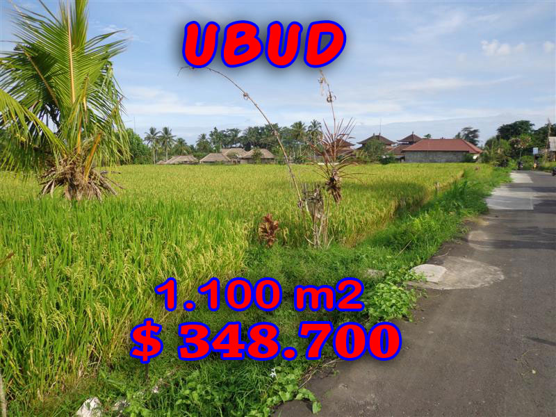 Land for sale in Ubud 11 Ares in Ubud Center Bali