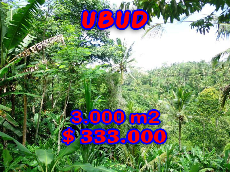 Land for sale in Ubud Bali by the river valley – TJUB205