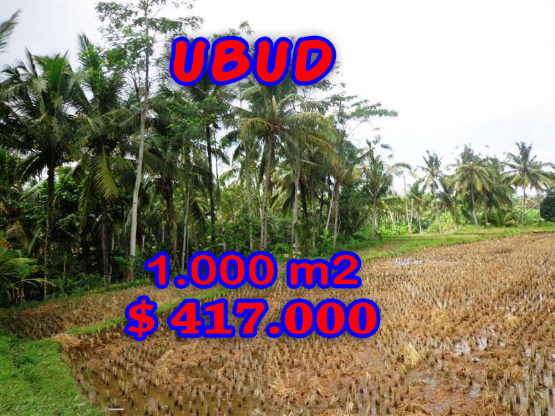 FabulousLand for sale in Ubud Bali, rice fields view in Ubud Center– TJUB236