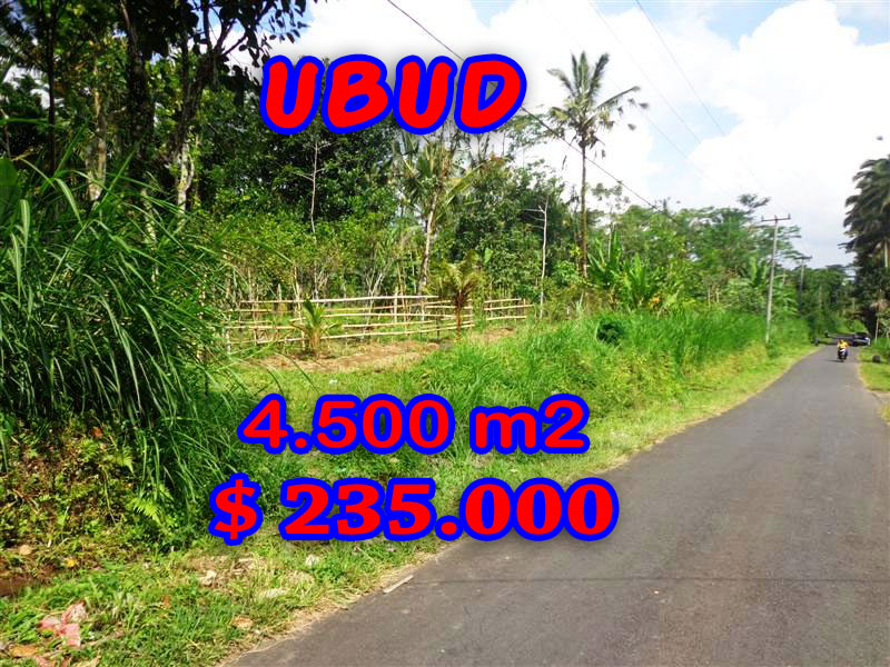 Land for sale in Ubud Bali, Gorgeous view in Ubud Pejeng – TJUB237