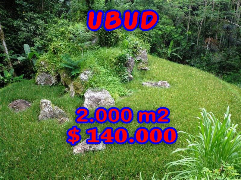 Land in Ubud Bali For sale 20 Ares with Paddy View