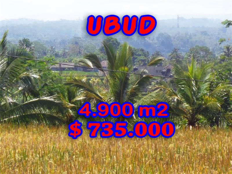 Land for sale in Ubud Bali 49 Ares in Ubud Tegalalang