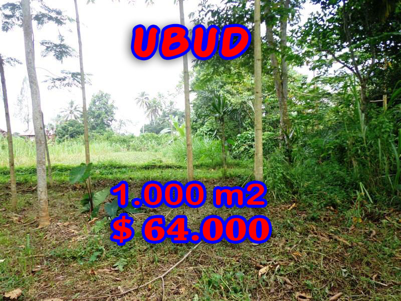 Land for sale in Bali, Exotic view in Ubud Bali – 1.000 sqm @ $ 63