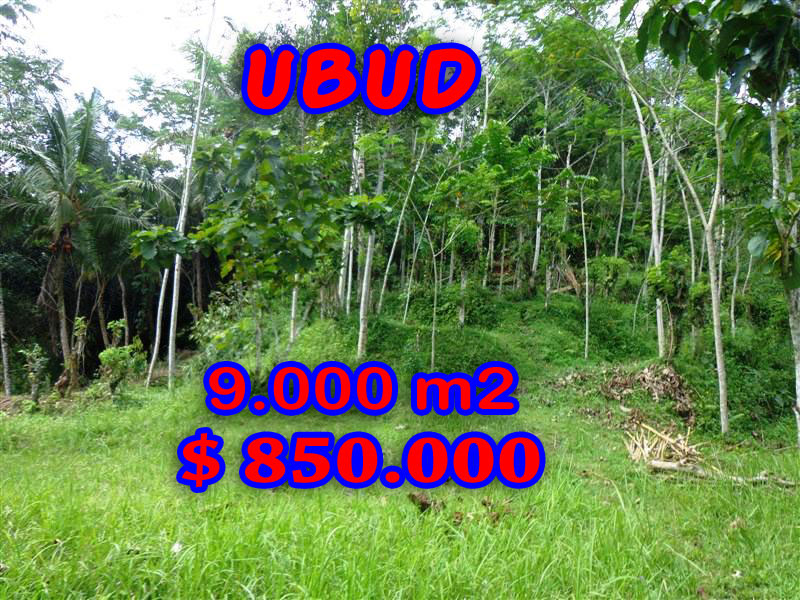 Terrific Property in Bali, Land for sale in Ubud Bali – 9.000 sqm @ $ 94