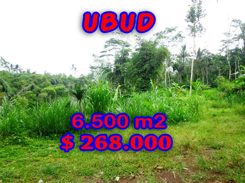 Land for sale in Bali, Extraordinary view in Ubud Bali – 6.500 sqm @ $ 41