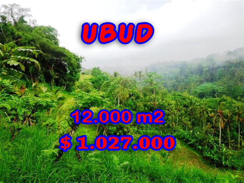 Land in Ubud Bali for sale, Eye-catching view in Ubud Tegalalang – TJUB254