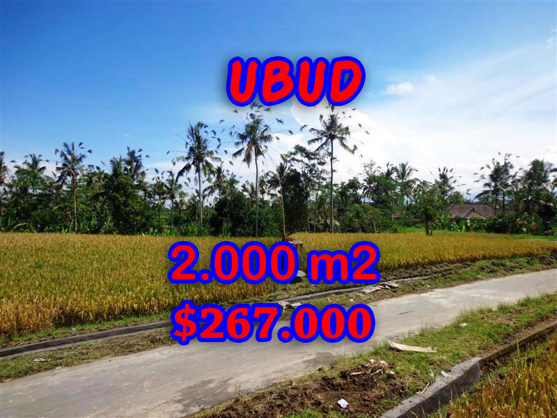 Interesting Land for sale in Ubud Bali, mountain view in Ubud Tegalalang – TJUB246