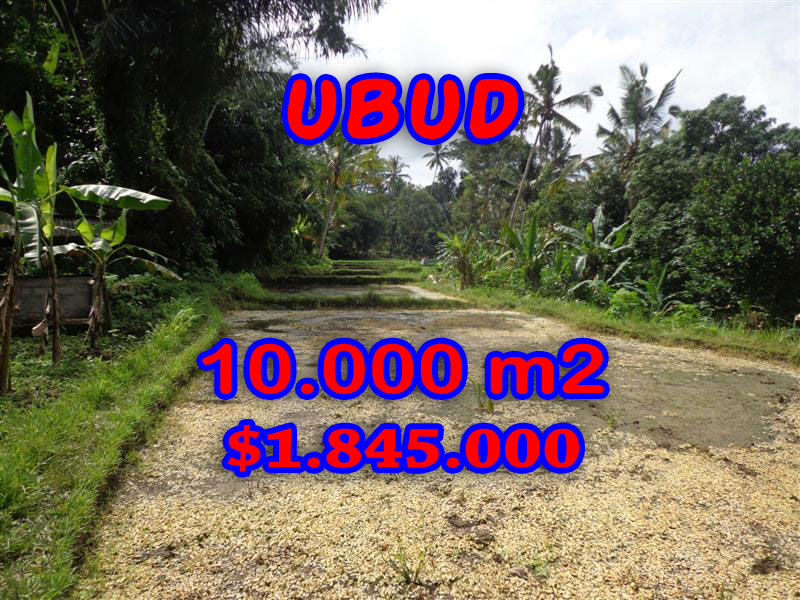 Land for sale in Ubud, Fantastic view in Ubud center Bali – TJUB258