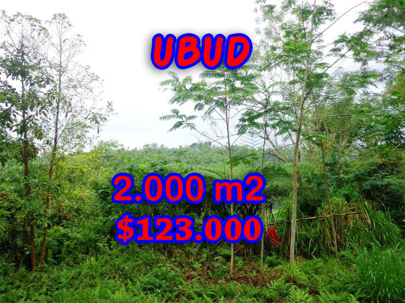 Land for sale in Ubud, Magnificent view in Ubud Tegalalang Bali – TJUB248