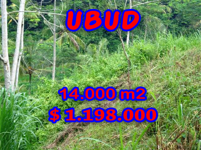 Attractive Property in Bali, Land sale in Ubud Bali – 14.000 sqm @ $ 86