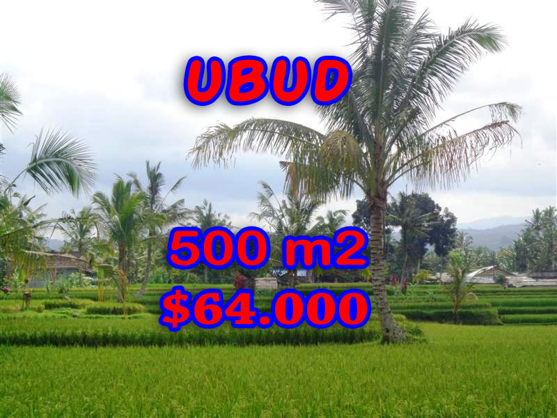 Land for sale in Ubud Bali, Gorgeous view in Ubud Tegalalang  – TJUB257