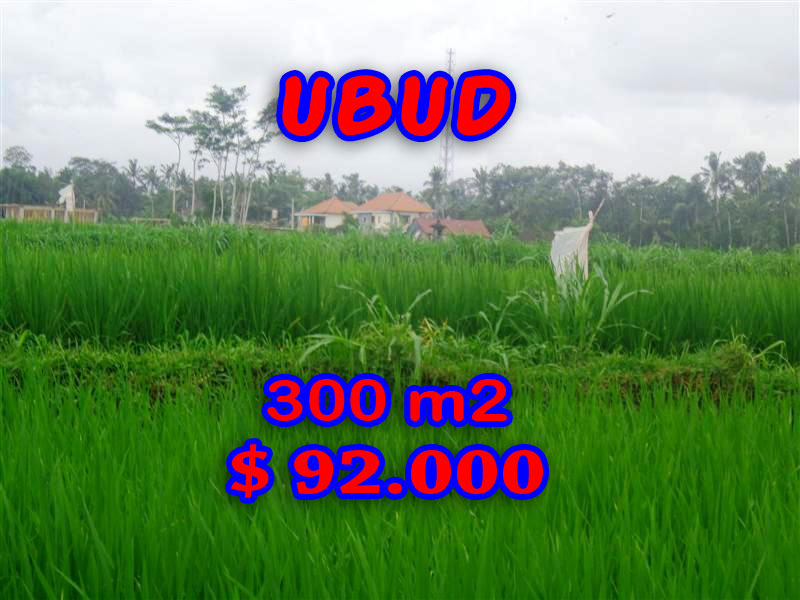 Land for sale in Ubud Bali, Great view in Ubud Center – TJUB282