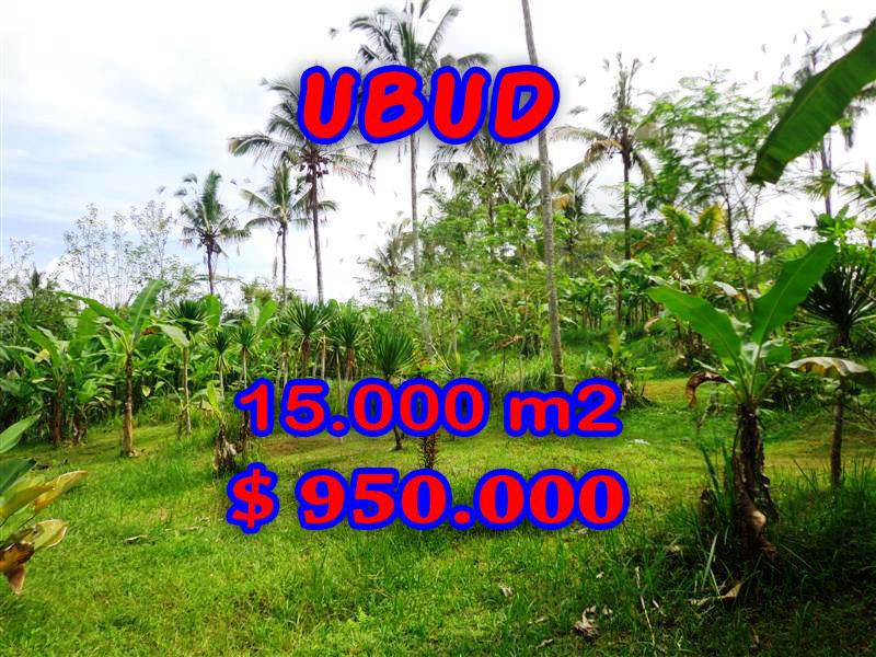ExoticLand for sale in Ubud Bali, Garden view in Ubud Payangan– TJUB261