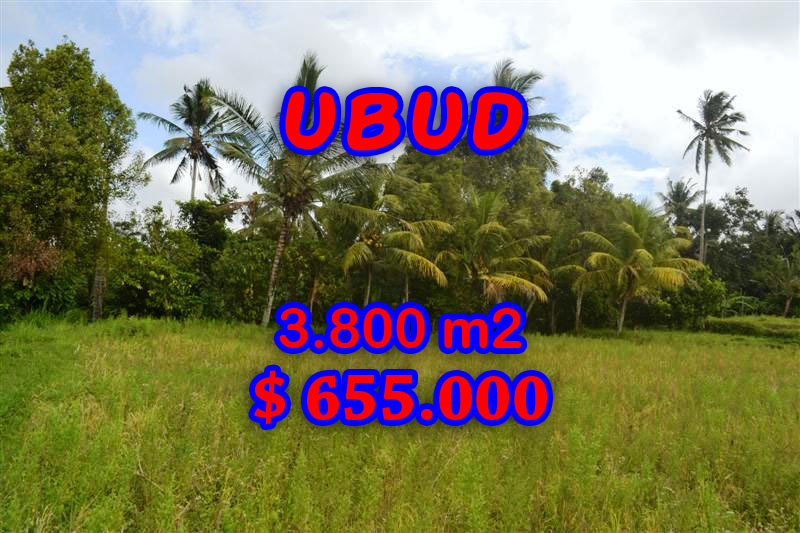Extraordinary Land for sale in Ubud Bali, rice fields view in Ubud Pejeng– TJUB271