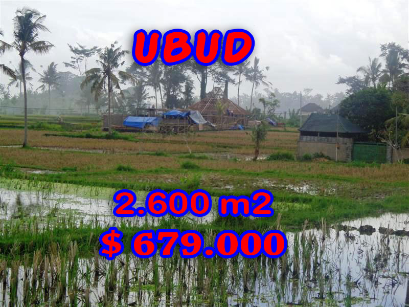 Exotic Land for sale in Ubud Bali, rice fields view in Ubud Center– TJUB281