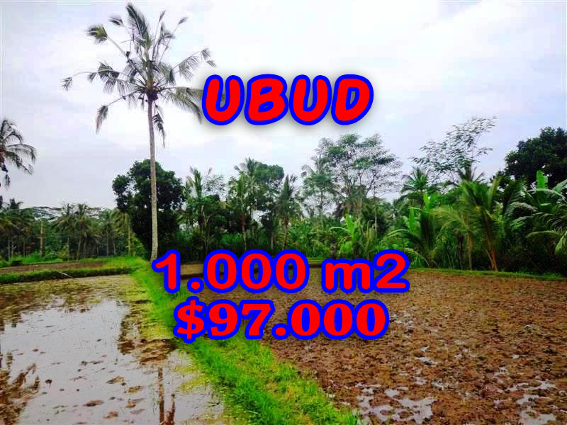 Land in Ubud for sale, Attractive view in Ubud Tegalalang  Bali – TJUB255